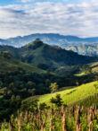 Nicaragua El Mozonte SHG - 1kg