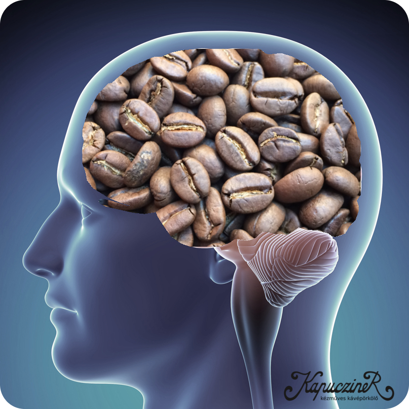 koffeinmentes kávé élettani hatása